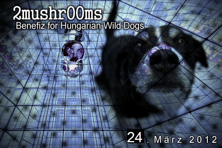 Party flyer: 2mushrOOms - Benefiz for Hungarian Wild Dogs 24 Mar '12, 22:00
