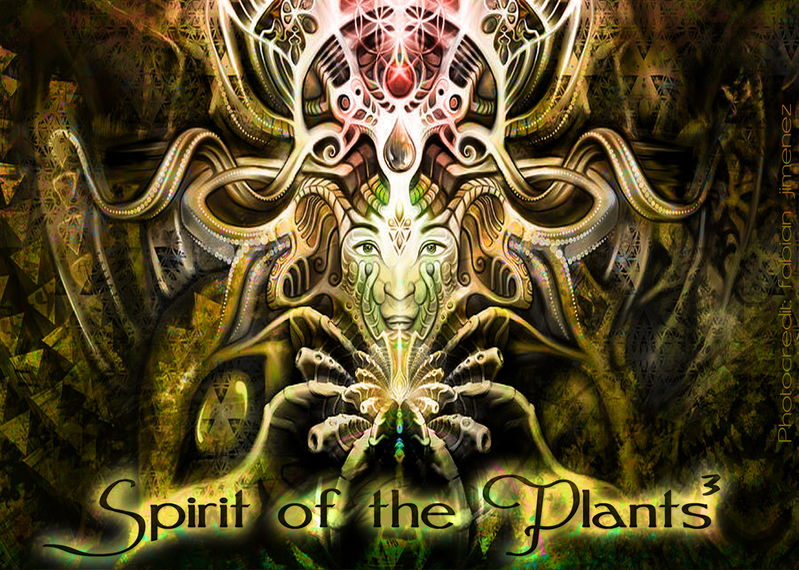 Party flyer: Spirit of the Plants III 21 Sep '13, 22:00