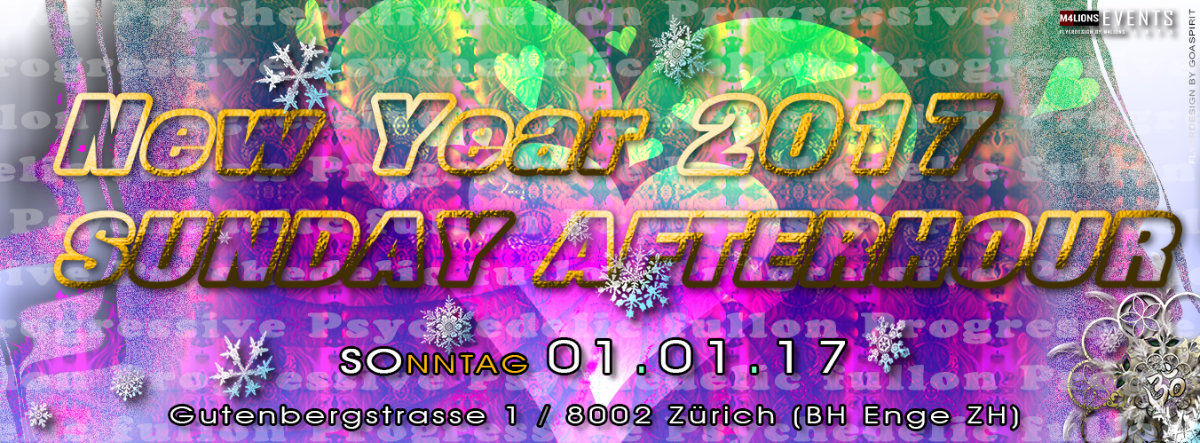 NEW YEAR - SUNDAY AFTERHOUR - BH Enge ZH 1 Jan '17, 11:00