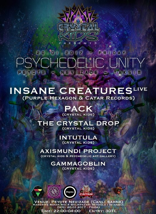 PSYCHEDELIC UNITY - Insane Creatures (Live) 20 Jan '17, 22:00