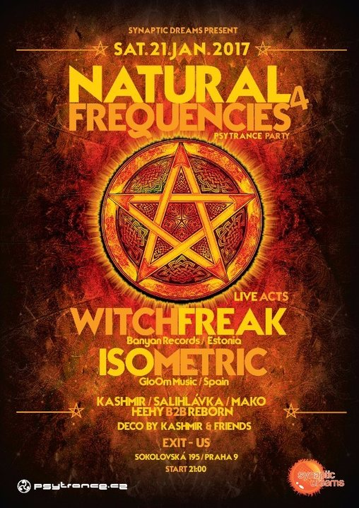 Party flyer: Natural Frequencies 4 21 Jan '17, 21:00