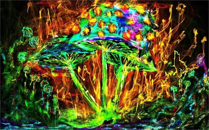 Psychedelisches Pilzgematsche 24 Jun '17, 23:00