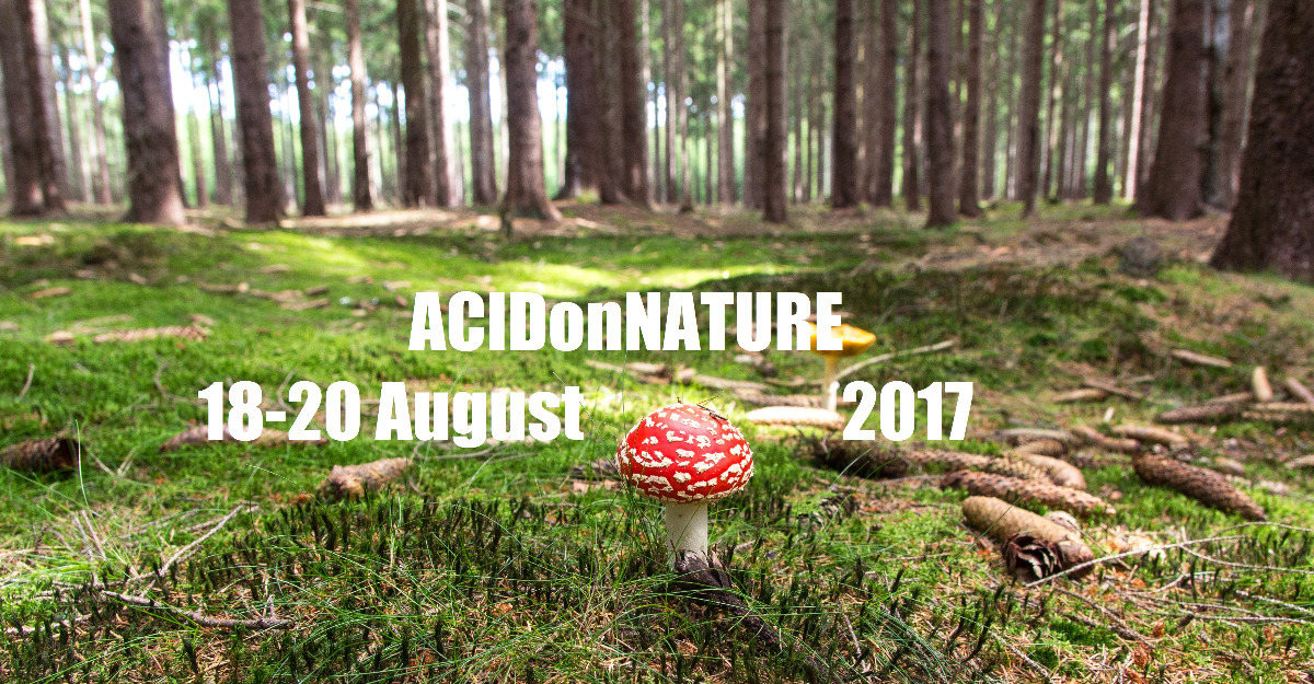 Party flyer: ACIDonNATURE 2017 B-Day 29 again 18 Aug '17, 18:00