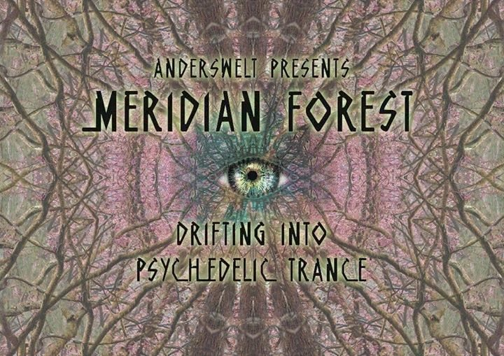 Anderswelt presents / Meridian Forest / Psy-Trance & Chill Out 10 Nov '17, 23:00