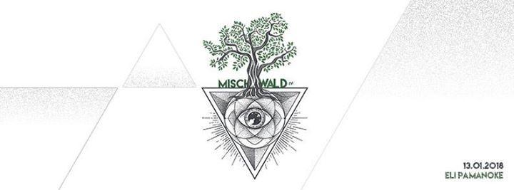 Mischwald 13 Jan '18, 21:00