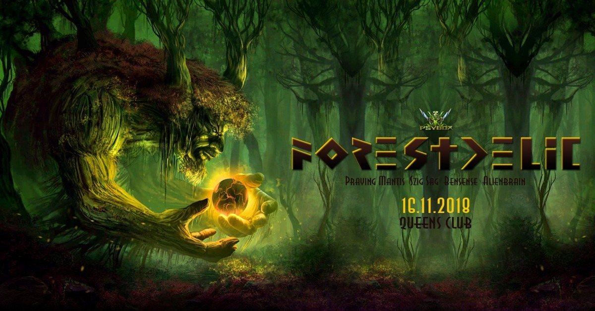 Psybox - Forestdelic 5 16 Nov '18, 22:00