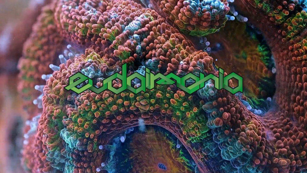EUDAIMONIA pres: Lunatica & Tropical Bleyage 7 Dec '18, 22:00