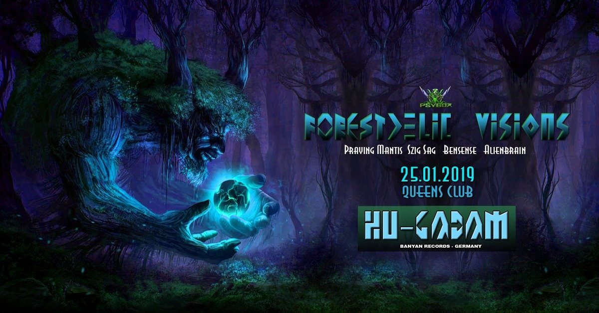 Psybox - Forestdelic Visions with Hu-Gadam 25 Jan '19, 22:00