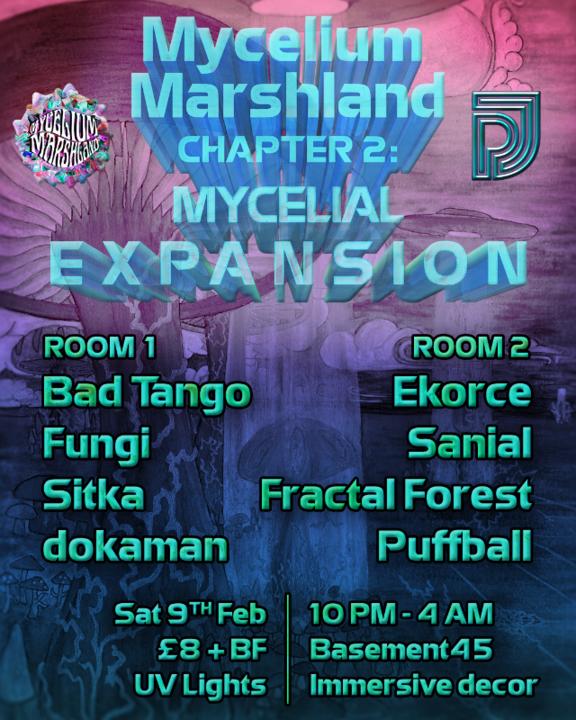 Mycelium Marshland - Mycelial Expansion 9 Feb '19, 22:00