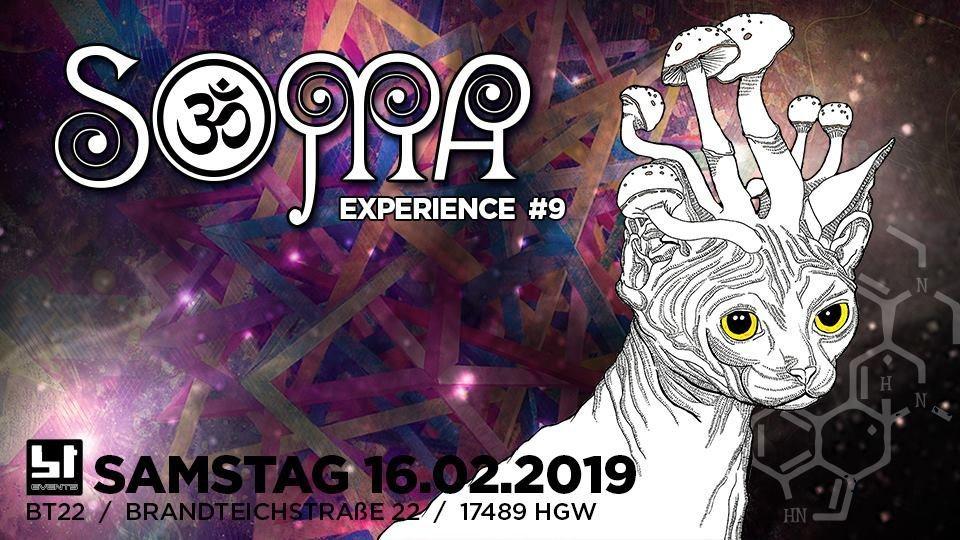 16 Soma-Experience #9 16 Feb '19, 23:00
