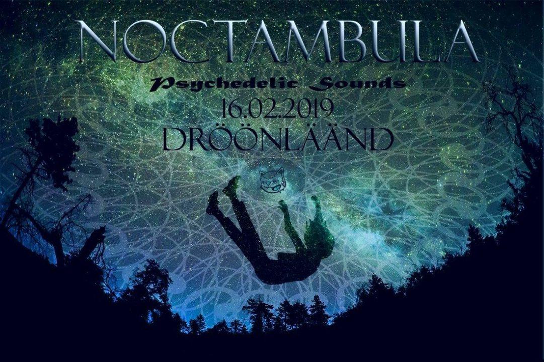 Noctambula 16 Feb '19, 23:00