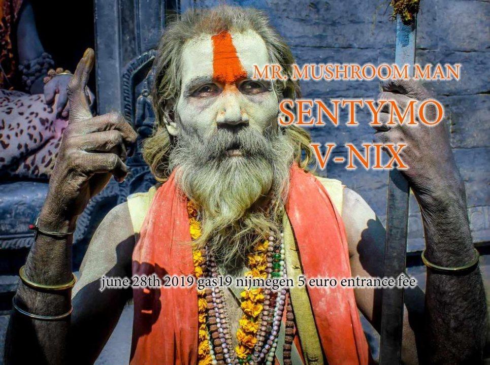 Quantum Tribe (journey into psytrance) 28 Jun '19, 23:00