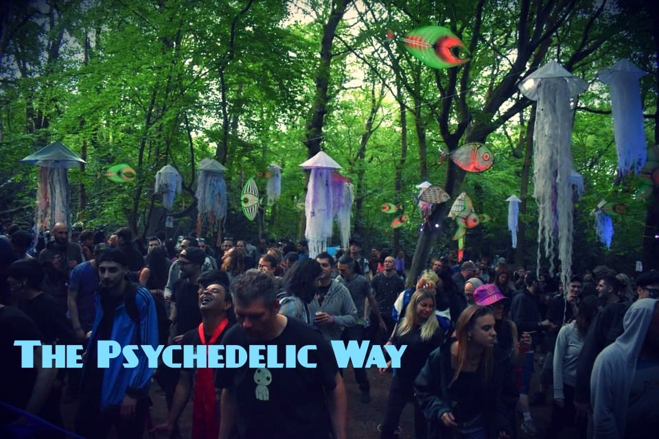 The Psychedelic Way Free Forest Party 17 Aug '19, 23:00