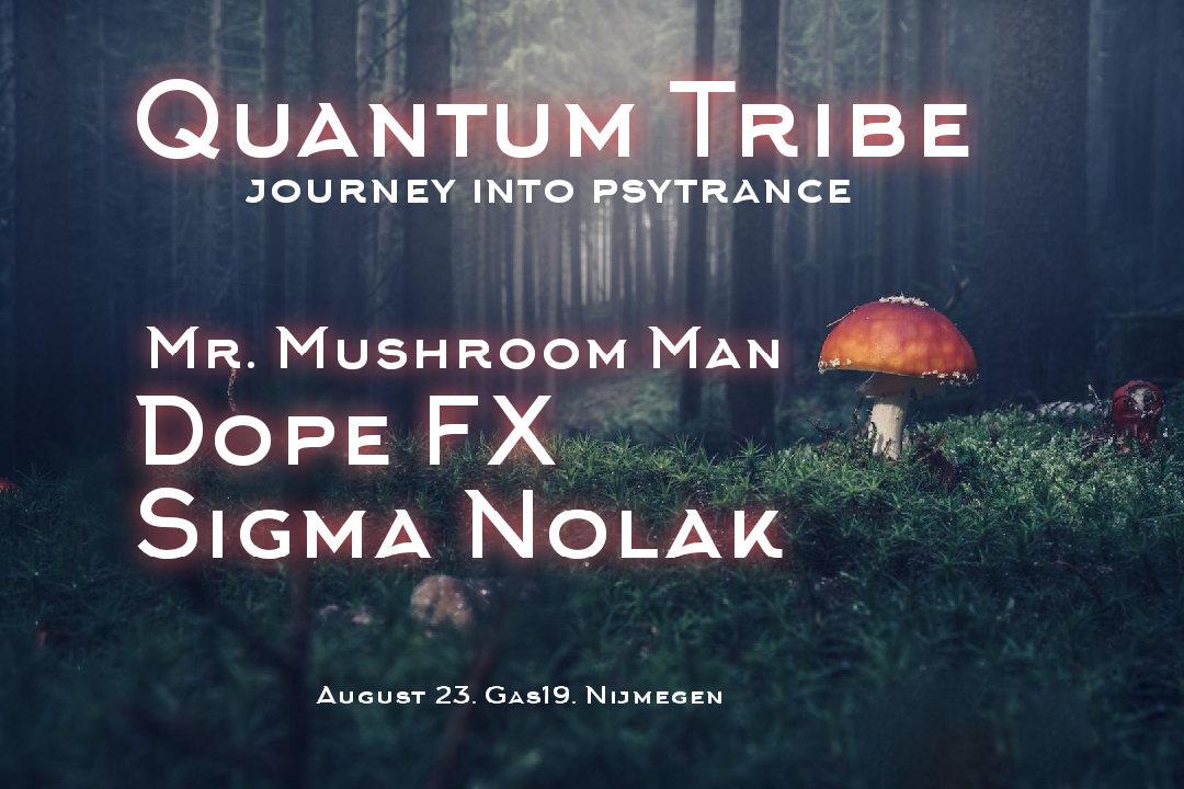 Quantum Tribe (journey into psytrance) 23 Aug '19, 23:00