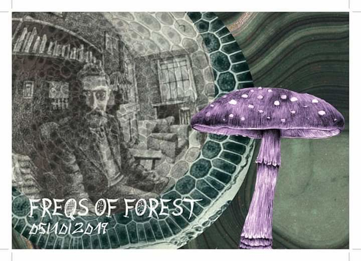 freqs of forrest 5 Oct '19, 22:00