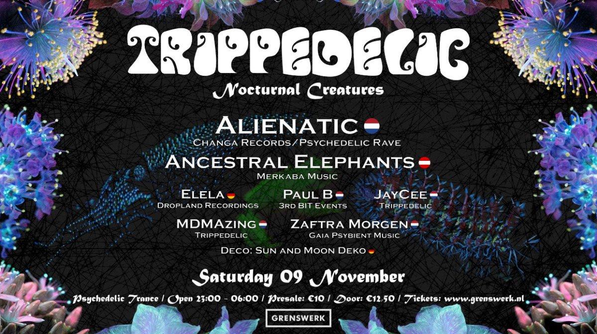 Trippedelic - Nocturnal Creatures 9 Nov '19, 23:00