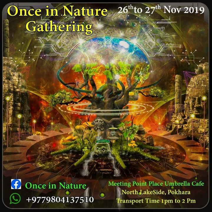 Once in nature 26 Nov '19, 11:00