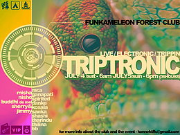 Party flyer: TRIPTRONIC 4. Jul 15, 06:00h