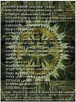 Party flyer: United Spirits openair gathering 30 Jul '16, 12:00h