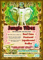 Party flyer: Jungle Vibez 14 Feb '18, 19:00