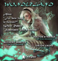 Party flyer: Wonderland ۞ return to the rabbit hole 22 Feb '20, 19:30