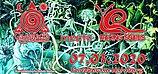 Party flyer: Gaggalacka meets Racing Snails 7 Mar '20, 23:00