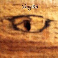 DJ SkogRa (ex DJ Tarantula)